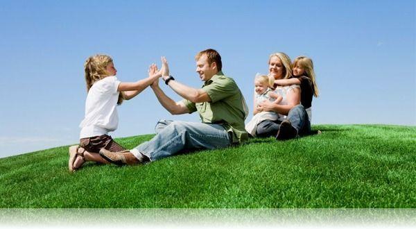 Земля бесплатно молодой семье от государства в 2020 году: условия получения земельного участка