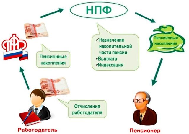 Перевод пенсионных накоплений в НПФ: порядок и условия перевода, особенности фондов