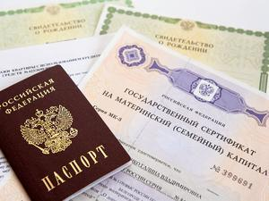 Материнский капитал в Новосибирске и Новосибирской области: размер региональных выплат, условия получения и особенности программы, правила использования и порядок оформления, необходимые документы