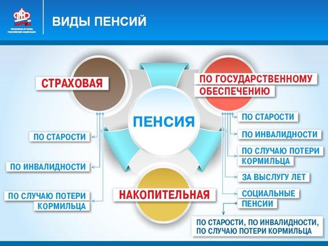 Виды социальных пенсий в России: существующие виды пенсионных выплат