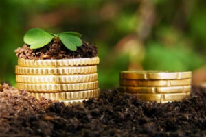 Льготы сельским работникам: какие положены и как получить