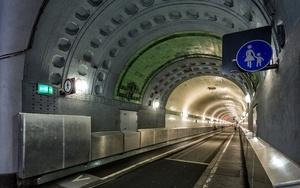 Льготы на общественный транспорт и бесплатный проезд для детей в 2020 году