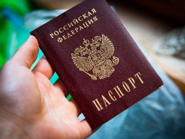 Как узнать свой номер СНИЛС: по фамилии, ИНН и паспорту