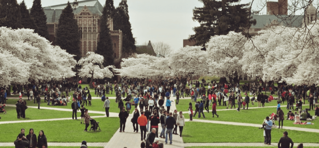 Грант на образование за границей в 2020 году: популярные программы в США, Европе и Азии, условия, правила и особенности получения гранта