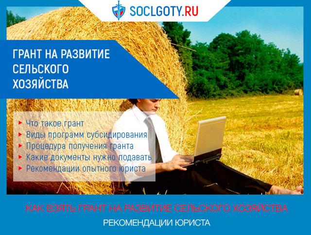 Грант на развитие сельского хозяйства в 2020 году: как получить субсидии и государственную поддержку начинающему фермеру