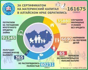 Материнский капитал в Барнауле и Алтайском крае: размер региональных выплат в 2020 году, условия получения и особенности программы, правила использования и порядок оформления, необходимые документы