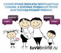 Пособия и выплаты на ребенка в Республике Тыва (Тува) в 2020 году: федеральные и региональные, размеры выплат, порядок и условия получения, необходимые документы