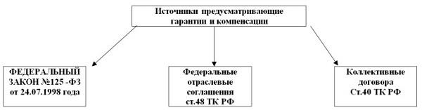 Компенсации и гарантии гражданам, получающим образование: условия и права по Трудовому Кодексу РФ