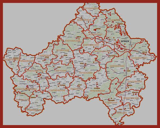 Социальная помощь в Брянске в 2020 году: льготы, пособия и другие меры соцподдержки для жителей Брянской области, государственные программы и законы