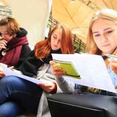 Проект профессиональной ориентации школьников начнет работать в 2018 г.