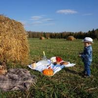 Программа «Молодой специалист на селе»: условия и правила, привилегии, льготы и выплаты