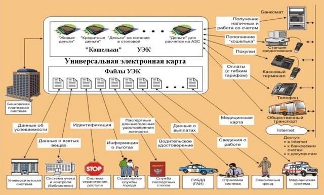 Сведения об имеющихся соцльготах планируют внести на чипированные банковские карты