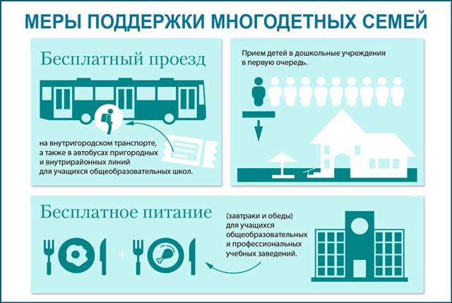 Социальная помощь в Новосибирске в 2020 году: льготы, пособия и другие меры соцподдержки для жителей Новосибирской области, государственные программы и законы