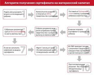 Материнский капитал через МФЦ в 2020 году: особенности и правила оформления, необходимые документы